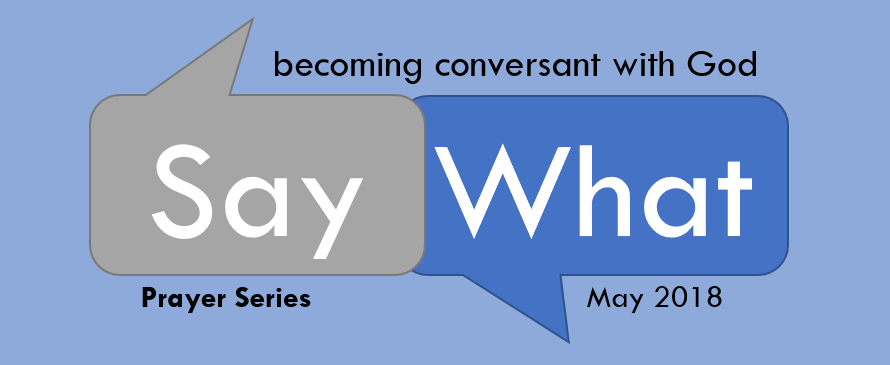 Say What Logo 2